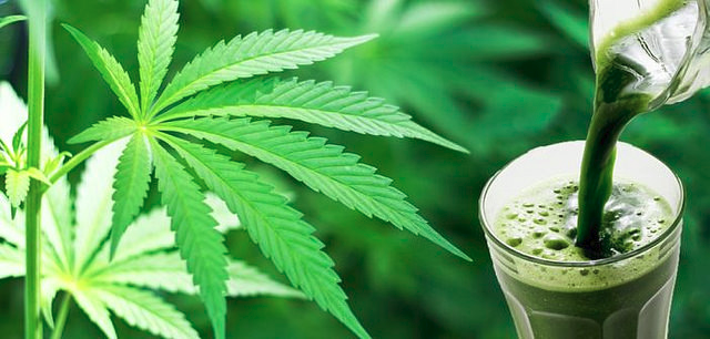 Improving Lifestyle with Cannabis