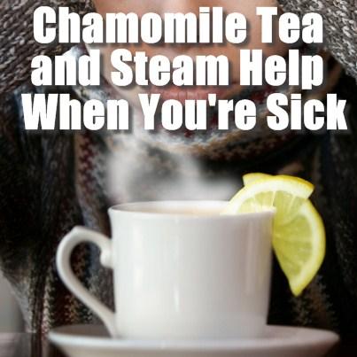 Chamomile-Tea-And-Warm-Steam-When-Sick1