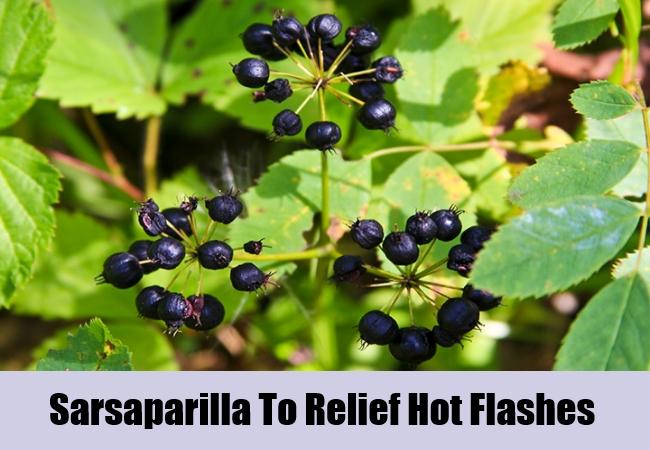Sarsaparilla-To-Relief-Hot-Flashes