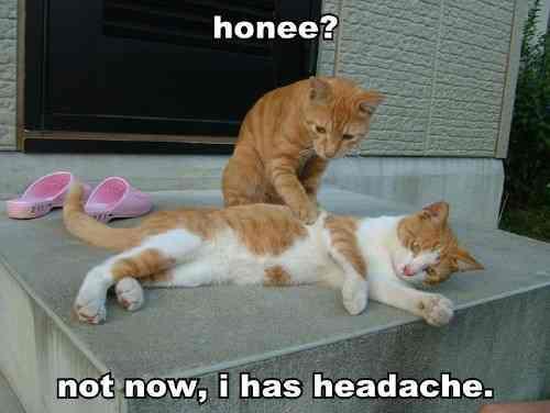 cure a headache